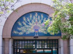Macy's (Travis Estell) Tags: california santabarbara departmentstore macys statestreet santabarbaracounty