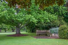 Payne Park (Natalia Volna itravelNZ@ travel app) Tags: cambridge newzealand watertower hamilton waikato sh1 statehighway1 paynepark waipa