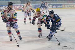 _RK (5 von 78) (rkphotografie.de) Tags: dresden nikon bad 70200 ec dresdner nauheim eishockey eislwen del2 d3s