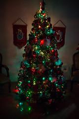 Navidad (Me dicen negra) Tags: christmas tree arbol navidad christmastree arboldenavidad