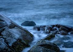 _61A4332.jpg (fotolasse) Tags: karlshamnfåglarlångaexponeringar karlshamn storm blåst vatten rågar hamn hav sjö båtar water sea birds rocks klippor