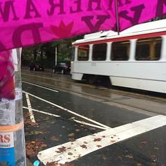 Baltimore Ave pink umbrella Septa 34 moving (karenchristine552) Tags: 34trolley baltimoreave city pennsylvania philadelphia rain septa street streetscene trolley umbrella universitycity westphiladelphia wet