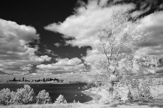 Spectacle Island IR V