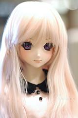Koneko Hime (krissy_sakura ) Tags: koneko hime dollfiedream dollfiedreamsister dds ddh09 custom originalcharacter oc pink doll vinyl bjd
