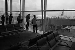 "Boeing, 747-467, B-HUJ, ""Cathay Pacific"", VHHH, Hong Kong - Bye Bye 747... (Daryl Chapman Photography) Tags: bhuj boeing 747 744 747467 lastflight goodbye gate4 hongkong china sar hkia clk hkg hongkonginternationalairport cheklapkok canon 5d mkiii is ii f28 plane planes aviation planespotting arrival departure flight commercialaviation civilaviation great fly flying sky dslr hongkongspotters aviationnut vhhh daryl chapman cx cpa tokyo haneda october1st 1061 27595 cx543 2470mm"
