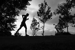 Keep Running! (Ramesh Adkoli) Tags: landscape silhouette malnadultra bw blackwhite d800e capturenx
