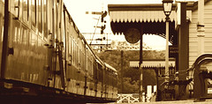 Nene Valley Railway. Wansford Station. Oct 2016 (SimonHX100v) Tags: nenevalleyrailway wansford wansfordstation train transport trainstation lowpov steamtrain sepia stibbington peterborough cambridgeshire sonyhx100v simonhx100v england uk unitedkingdom greatbritain nostalgia
