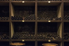 the nectar of the vines (charlesgyoung) Tags: cotedebeaune france burgundy wine winecellar charlesyoung nikonfx nikon d810 vikingrivercruise travelphotography barrels
