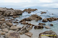 023 coast LR (bradleybennett) Tags: water river ocean stream creek beach shore shoreline line coast tide
