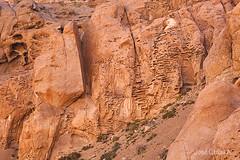 _MG_8421m (jose_cañas_aves) Tags: camino barrick punta colorada