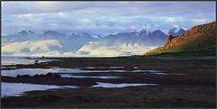Manasarovar, Tibet. Манасаровар, Тибет (Yuriy Sanin) Tags: manasarovar tibet slide mountains colour mamiya6 landscape lake dog 6x6 yuriy sanin юрийсанин тибет слайд цвет озеро горы горныйпейзаж свет тень light shadow