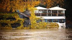 Torino (21) (cattazen.com) Tags: alluvione torino po esondazione parcodelvalentino murazzi pienadelpo cittditorino turin piemonte