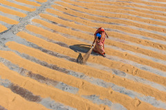 A woman working in a rice mill (Zakir Hossain Sohel) Tags: ricemill paddydryer paddy bangladeshiworker indianworker woman womanineconomy people poorpeople rice yard beautifulbangladesh goodframe nicecomposition bestcomposition desipeople womanempowerment