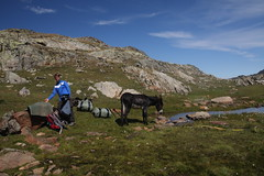 IMG_4314 (theresa.hotho) Tags: camping en france saint montagne de hiking donkey grand pic tent alpe dhuez besse anes rousses sorlin letendard stjeandarves eselwandern