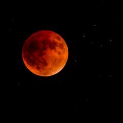 Crop (revlimit) Tags: sky moon eclipse nikon d800
