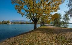 lake Zajarki (045) (Vlado Ferenčić) Tags: lakezajarki lakes zaprešić landscapes autumn autumncolours hrvatska croatia nikond600 nikkor173528 vladoferencic vladimirferencic