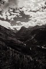 D - 116 (Mergiez) Tags: bw sepia digital canon landscape f14 24mm 5dmkiii