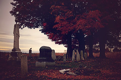nevermore (carlamgk) Tags: sunset grave dark cornfield creepy raven fallenleaves frombeyond countrycemetery