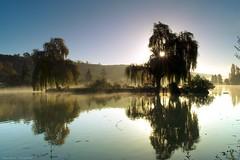 (Distagon12) Tags: light lake water sunrise landscape soleil sony reflet paysage marais a7r ecluzelles zeiss35