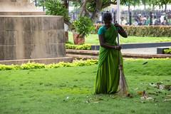 Sari (felipeepu) Tags: plants india pflanzen indie incredible sari garten indien plantes incroyable kehren