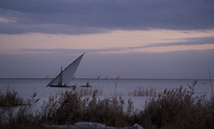 Sunset (Marwa Elchazly) Tags: winter sunset lake sailboat wintersunset purple cloudy egypt   cloudysunset     elbrulus