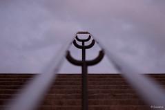 Al cielo. 84/365 (Susana RC) Tags: parque cielo 365 escaleras baranda pasamanos proyecto365