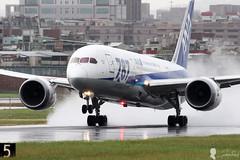 All Nippon Airways Boeing 787-8 Dreamliner JA803A (Steven Weng) Tags: taiwan taipei boeing 787 ana canon eos7d2 500mm ef500 aircraft aviation  rcss tsa airways dreamliner all nippon 7878 ja803a