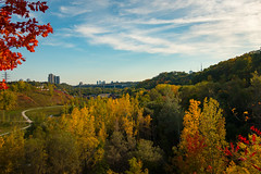 Don Valley in Autumn (A Great Capture) Tags: ig superpark canopy river eastend skyline trail path treetops trees nature urban tree donvalley canada ontario on toronto autumn fall foliage feuillage agreatcapture agc wwwagreatcapturecom adjm canadian photographer northamerica ash2276 ashleylduffus ald mobilejay jamesmitchell automne herbst 2016 natur naturaleza natura skylineurbannature vibrant colorful woods leaves leaf landscape paisaje paysage landschaft red orange yellow green blue sky valley city viaduct