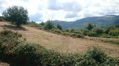 DSC_0965 (vittorio.sanzone) Tags: italia italy sicilia sicily contrada piano campi san piero patti santa maria