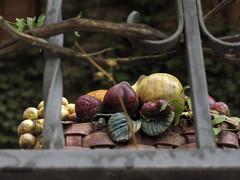 Bodegn en la ventana (Micheo) Tags: granada spain paseo walk city ciudad detalles details