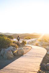 Cheril2 (itsaaaldy) Tags: joshuatree joshuatreepark california nikon nikoncamera sunrise vsco vscofilm vscocam photography landscape portrait d3200 dslr desert