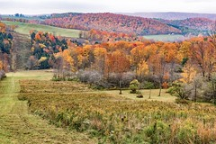 db pipeline and hill-2016 (dfbphotos) Tags: nikon 2016 october tioga fall landscapes mountains nature foliage trees sabinsville tiogacounty places dbcamp pipeline pa usa