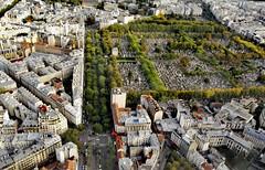 Paris - Depuis la Tour Montparnasse (delphinebrg) Tags: paris france montparnasse tourmontparnasse vue view cimetire cimetiremontparnasse monument btiments haussmanien