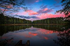 Dream at the lake (Goddl) Tags: see abend stimmung wald farben blick outdoor