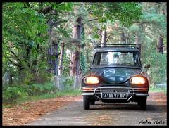 Balade automnale... (andre2cv87) Tags: citroen ami 6 break berline vert charmille ac 522 1969 phares ampoules jaune automne france