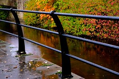 Friday's Fence (violetchicken977) Tags: fencedfriday fence castiron rain autumnleaves reflection pickering northyorkshire