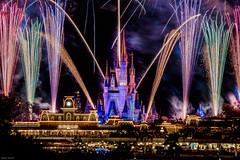 Wishes from the TTC (mwjw) Tags: wishes disney disneyworld transportationandticketcenter ttc mwjw markwalter nikond810 orlando florida fireworks magickingdom night longexposure nightshot