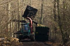 ckuchem-7215 (christine_kuchem) Tags: wald abholzung baum baumstmme bume einschlag fichten holzeinschlag holzwirtschaft waldwirtschaft