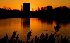 Through the Towers (Skylark92) Tags: nederland netherlands holland amsterdam oost water lake meer nieuwe diep flevopark tower toren sunset red sky rode lucht rood zonsondergang east rembrandt