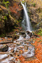 Somewhere in the Black Forest (beatriceverez) Tags: waterfall long exposure water black forest schwarzwald germany