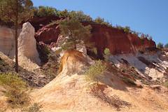 Colorado provenal (Rustrel) (Didier Auberget Photographie) Tags: arbres trees paysage landscape coloradoprovenal rustrel ocres ocresderustrel vaucluse france jeantienneastier carriresdocre anciennescarriresdocre provencealpesctedazur