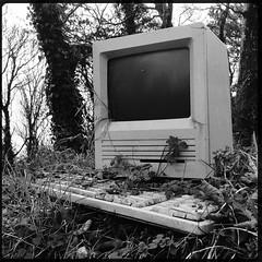 (Marklucylockett) Tags: applemacintosh marklucylockett apple macintosh cornwall december 2016 computer outside outdoor se hipstamatic iphone