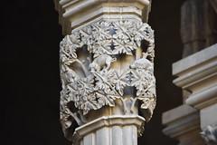 Claustre de la Seu Vella de Lleida (esta_ahi) Tags: lleida claustre claustro cloister seuvella ri510000156 catedral gtic gtico segri lrida spain espaa  capitel porc cerdo pig
