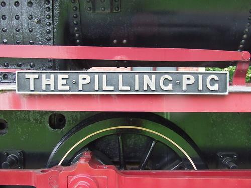 2016 # 23, Pilling Pig, Pilling, Lancashire 1.
