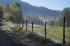 Le bon côté des choses **---+°-° (Titole) Tags: barbedwire barbelé fence nicolefaton titole jura frost mist friendlychallenges challengeyouwinner cyunanimous 15challengeswinner gamewinner