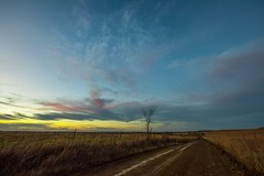 Country Road, Take Me Home (thefisch1) Tags: road country sky cloud fence pasture tree wire barbed sunset kansas jackson county grass blue stem