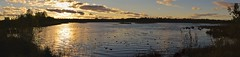 Borovoye lake, sunset, ND4 filter. (moshepotz) Tags: fomkino nd4 evening sunset ленинградскаяобласть бокситогорскийрайон