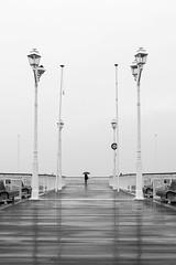 Alone in the rain (Adrien GP) Tags: nikon nikond610 sigma art 50mm f14 rain umbrella blackandwhite bw ocean sea arcachon