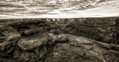 bw3 copy copy (Arniesra) Tags: utah canyonlands deadhorse hdr pentaxk3 sonya6000 landscapes