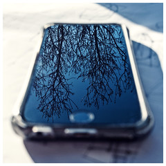 Apple Trees (Bruus UK) Tags: iphone trees screen sunlight window desk tabletop designing sketching drawing working distraction outside garden mobile autumn office studio blur dof reflection image breeze blue
